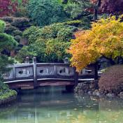L'un des plus beaux jardins de New York, le jardin japonnais de Brooklyn