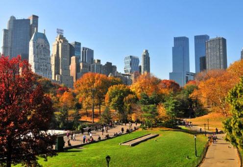Les meilleures activités bien être à faire à New York, notre guide