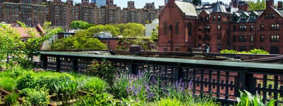 Découvrez la High Line de New York, lieu de balade incontournable